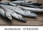fresh catch of kingfish lying... | Shutterstock . vector #676323181