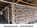 organic mushroom farm. ... | Shutterstock . vector #676334065