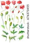 watercolor wildflower.floral... | Shutterstock . vector #676373455