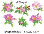 Rose Hip. Floral Set.watercolor ...