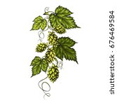 stylized green branch with beer ... | Shutterstock .eps vector #676469584