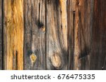 Structure Of Wood.