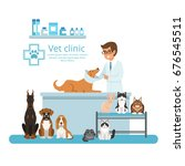 animals in cabinet of vet... | Shutterstock .eps vector #676545511