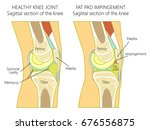 vector illustration of a... | Shutterstock .eps vector #676556875