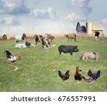 farm animals in a field   Shutterstock . vector #676557991