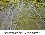 wet ground | Shutterstock . vector #676558954
