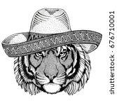 wild tiger wild animal wearing... | Shutterstock . vector #676710001