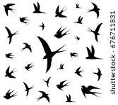 birds icons vector illustration | Shutterstock .eps vector #676711831