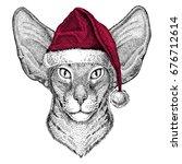 oriental cat with big ears... | Shutterstock . vector #676712614