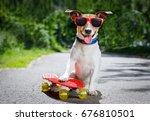 jack russell terrier dog ... | Shutterstock . vector #676810501