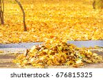 cleaning in the park   heap of... | Shutterstock . vector #676815325