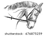 isolated horse head with bridle ... | Shutterstock .eps vector #676875259