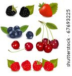 group of berries and cherries.... | Shutterstock . vector #67693225