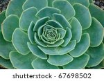 abstract background of green... | Shutterstock . vector #67698502