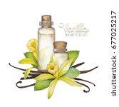 two watercolor bottles of...   Shutterstock . vector #677025217