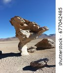 Small photo of Stone tree of the altiplano in Bolivia.