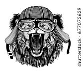 lion wild animal wearing biker... | Shutterstock . vector #677072629