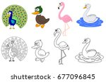 coloring book page for... | Shutterstock .eps vector #677096845