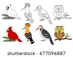 coloring book page for... | Shutterstock .eps vector #677096887