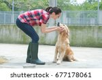 animal shelter volunteer... | Shutterstock . vector #677178061