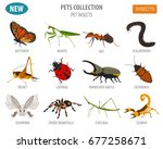 pet insects breeds icon set... | Shutterstock .eps vector #677258671