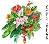 arrangement from tropical... | Shutterstock . vector #677415499