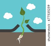 small strong plant breaking... | Shutterstock . vector #677535259