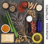 herbs and ingredients to heal... | Shutterstock . vector #677609851