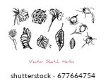 black and white vector set of... | Shutterstock .eps vector #677664754