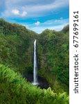 akaka falls state park in sunny ... | Shutterstock . vector #677699161
