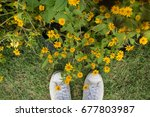 Small photo of flower with my lovely sneaker