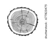 cross section of the tree.... | Shutterstock .eps vector #677823475