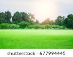 lawn  garden and trees  | Shutterstock . vector #677994445