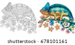 Coloring page of chameleon lizard. Colorless and color samples for book cover. Freehand sketch drawing for adult antistress colouring with doodle and zentangle elements. | Shutterstock vector #678101161