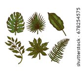 tropical leaves collection.... | Shutterstock .eps vector #678254575