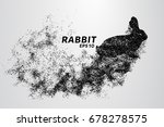 Rabbit From The Particles....
