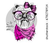 vector dog with black glasses ... | Shutterstock .eps vector #678278914
