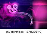 digital illustration of ebola... | Shutterstock . vector #67830940