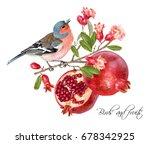 vector illustration with bird... | Shutterstock .eps vector #678342925