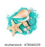 Sea Shells And Sea Stars With...