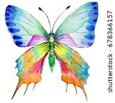 exotic butterfly wild insect in ... | Shutterstock . vector #678366157