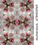 kaleidoscope pattern of... | Shutterstock . vector #678403969