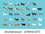 Stock vector various cats side view cartoon vector illustration 678461371