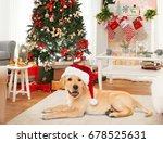 Cute Puppy In Santa Hat Lying...