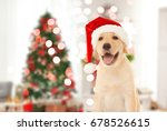 Stock photo cute puppy in santa hat and blurred living room decorated for christmas on background 678526615
