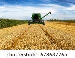 Harvesting Wheat Harvester On ...