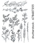 hand drawn ink sketches of... | Shutterstock . vector #678687355