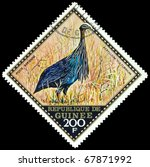Small photo of REPUBLIQUE DE GUINEE - CIRCA 1976 : A stamp printed in Republique de Guinee shows bird Acryllium vulturinum, series, circa 1976
