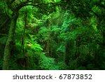 bunya mountains national park ... | Shutterstock . vector #67873852
