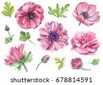 set of watercolor  pink flowers ... | Shutterstock . vector #678814591